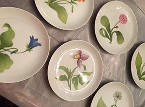 flowers-plates