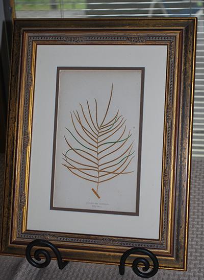 botanical-print