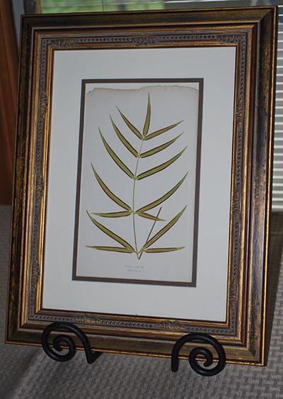 botanical-print1