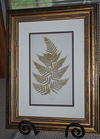 botanical-print2